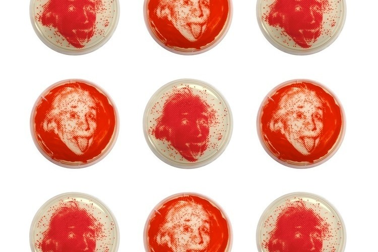 Meet The Scientist Growing Celebrity Portraits Out Of Bacteria