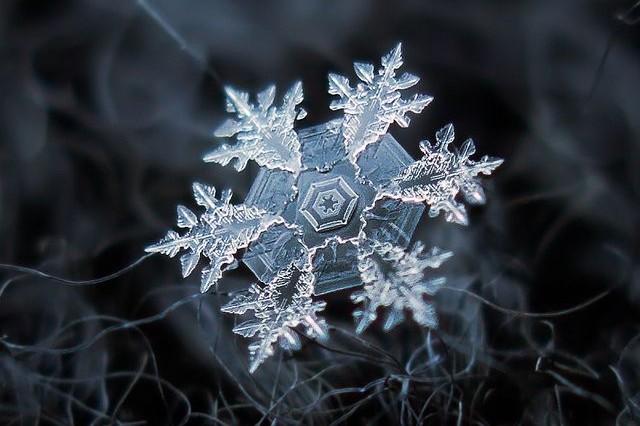 Frisch gefallene Schneeflocken in atemberaubender Nahaufnahme