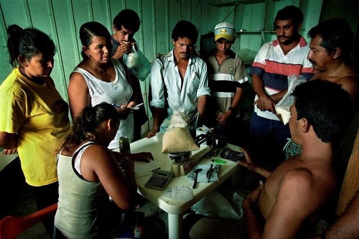 In foto: il viaggio della cocaina dai campi alle narici di tutto il mondo