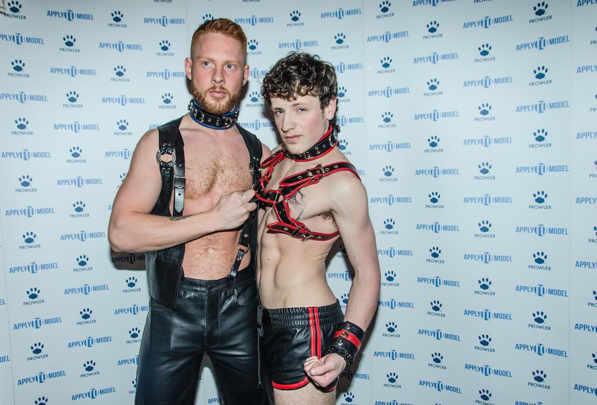 Gay porn awards