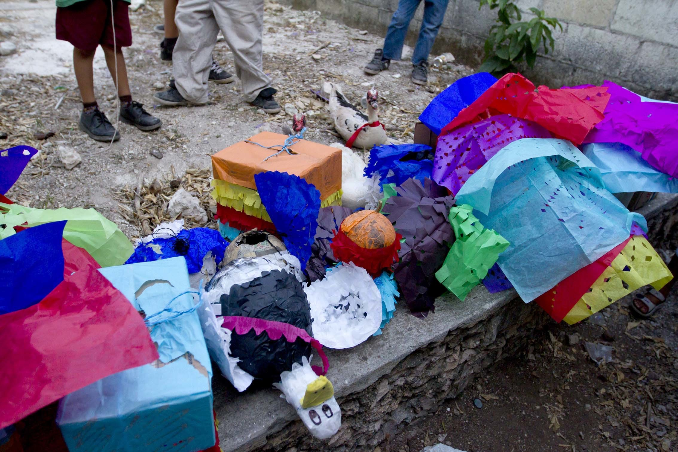 the yucatán custom of filling piñatas with live endangered animals