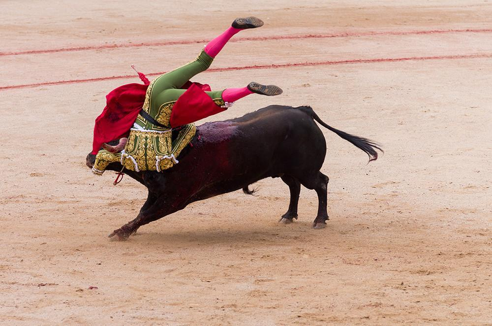 history of bullfighting Love it or hate bullfighting is an integral part of spain's cultural heritage learn some of the background to this controversial spectacle.